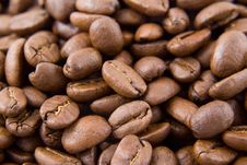 Free Colombian Coffee Beans Royalty Free Stock Photography - 1742537