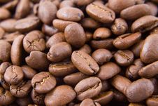 Free Colombian Coffee Beans Stock Photos - 1742573