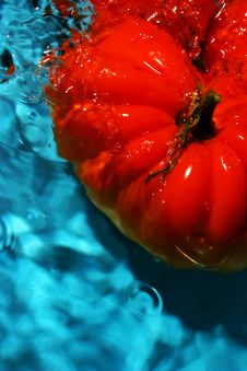 Free Tomato Wash Royalty Free Stock Photo - 1747335
