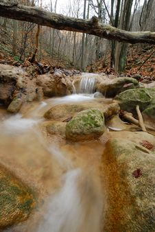 Free Stream And Rocks In The Forest Royalty Free Stock Image - 1747576
