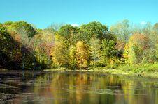 Free Fall Reflection Stock Photography - 1748052