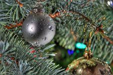 Free Wet Christmas Stock Photo - 1748140
