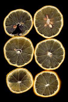 Free Lemon Stock Photos - 1749503