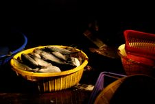 Free Fish For Sale In Market Royalty Free Stock Photos - 1749628