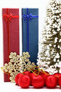Free Red And Blue Holiday Box With Christmas Ornament Royalty Free Stock Photography - 17407277