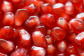 Free Macro Of Peeled Ripe Seeds Pomegranate Royalty Free Stock Image - 17408686