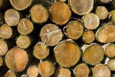 Free Logs Royalty Free Stock Photos - 17400948