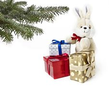Gift Boxes With Rabbit Stock Images
