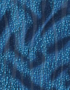 Free Blue Water Texture Royalty Free Stock Photos - 17402638
