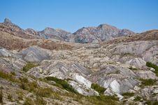 Blast Zone Of Mt. Saint Helens Royalty Free Stock Photo