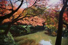 Free Autumn Leaf  And Lake Royalty Free Stock Image - 17405356