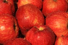 Free Red Apple Royalty Free Stock Image - 17405646