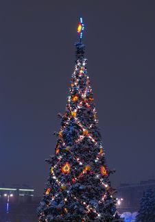 Free Christmas Tree Stock Photography - 17405782