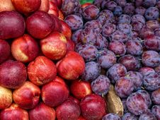 Free Plums And Nectarines Fruit Royalty Free Stock Image - 17406716