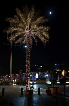 Free Night Illumination Of Dubai. Royalty Free Stock Photo - 17408975