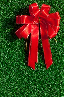 Free Red Bow On Green Grass Royalty Free Stock Photo - 17409235