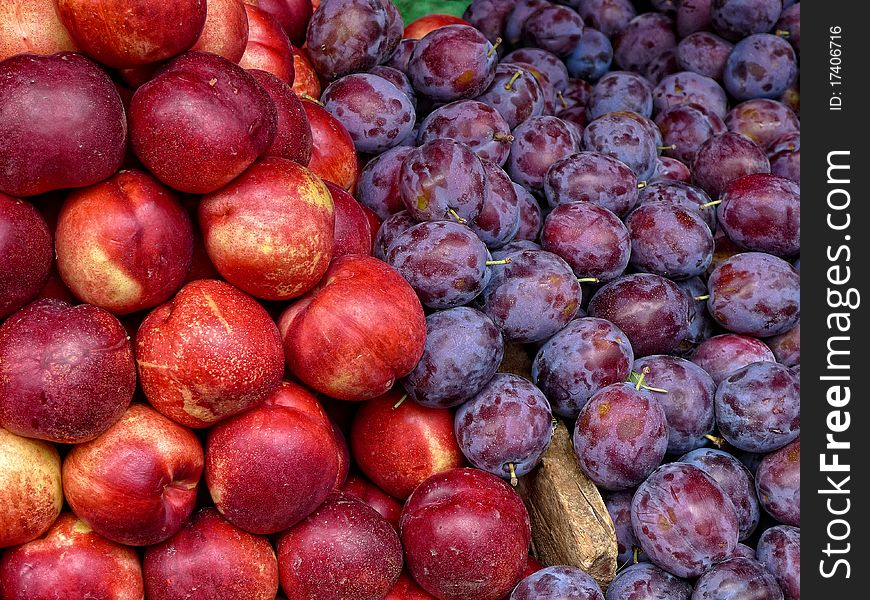 Plums and nectarines fruit