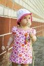 Free Dandelion Stock Photography - 17416412