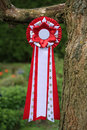 Free Red Ribbon With Paw Print Royalty Free Stock Images - 17417989
