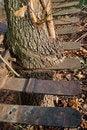 Free Wood  & Metal Stock Photo - 17419730
