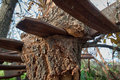 Free Wood  & Metal Stock Photos - 17419763