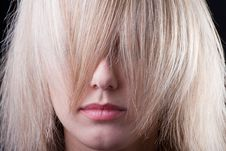 Free Beautiful Girl Hiding In A Strand Of Hair Royalty Free Stock Image - 17411316