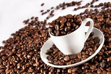 Free Cup Of Coffee Beans Stock Photography - 17411382
