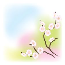 Free Light Background With Flowering Branch. Royalty Free Stock Photos - 17414038