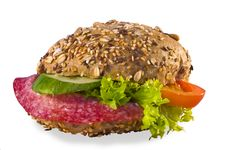 Free Fresh Sandwich Royalty Free Stock Photos - 17414148