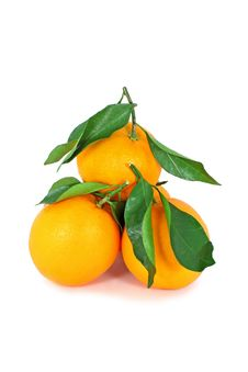 Free Oranges Royalty Free Stock Photos - 17415718