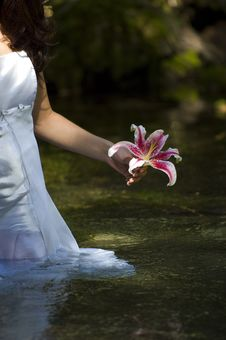 Free Young Woman In River With Flower Stock Photo - 17416350
