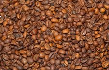 Free Background From The Corns Of Coffee Stock Photo - 17417760