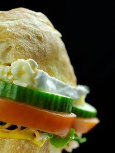 Free Big Sandwich Stock Image - 17418131