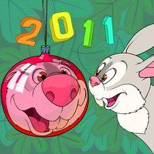 Rabbit And Christmas Ball Stock Photo