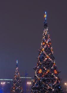 Free Christmas Tree Stock Photo - 17419480