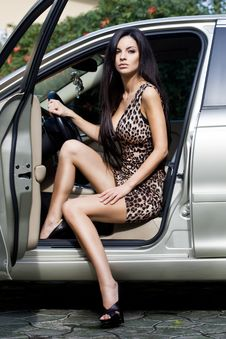 Free Woman At The Car Royalty Free Stock Image - 17419756