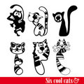 Free The Band Of Six Funkey Cats Royalty Free Stock Photos - 17421548