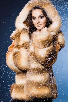 Free Woman In A Fur Coat Royalty Free Stock Photo - 17420165