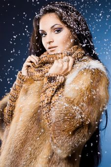 Free Woman In A Fur Coat Stock Photography - 17420172