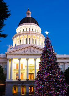 Free Capitol Christmas Tree Stock Images - 17422024