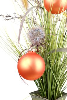Free Grass With Christmas Decoration. Royalty Free Stock Photos - 17422298