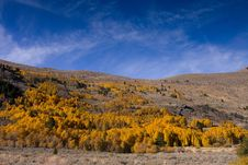 Free Fall Colors In The Eastern Sierra Royalty Free Stock Photography - 17422547