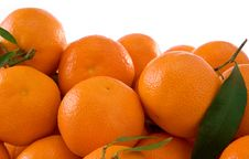 Free Tangerines And Green Leaves Isolated On White Stock Images - 17424474