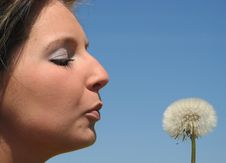 Free Portrait Of A Young Girl With Dandelion Royalty Free Stock Photography - 17425607