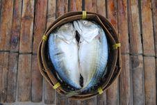 Free Mackerel Stock Photography - 17426212