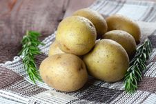 Free Potatoes And Rosemary Royalty Free Stock Photo - 17426705