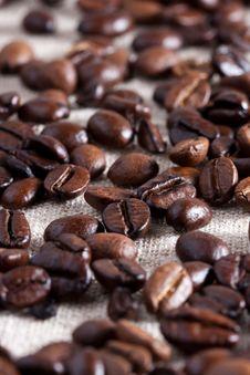 Free Coffee Beans Stock Photo - 17429010