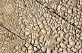 Free Land Dry Stock Photo - 17430160