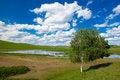 Free Landscape Of Grassland Royalty Free Stock Images - 17433449