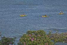Free Three Yellow Kayaks Royalty Free Stock Images - 17430959